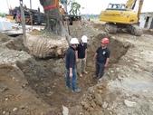 擴大樹穴結構模組--台中列管老樹移植施工實例:105-1206 台中水湳列管老樹移植 (193).jpg