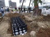 擴大樹穴結構模組--台中列管老樹移植施工實例:105-1206 台中水湳列管老樹移植 (329).jpg