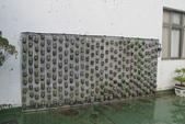 1-4  屋頂菜園 -- 竹南營盤社區之社區營造屋頂菜園:103-1022 屋頂菜園--營盤社區營造 (218).jpg