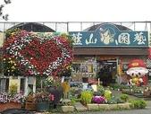 7  藍山園藝:100-0220 藍山園藝 008.jpg
