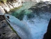 4-5  台灣櫻花鉤吻鮭  族群數量調查:DSCN9432  桃山西溪四號壩--數魚調查起點