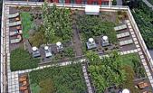 1-1  綠屋頂 -- 屋頂綠化:green-roof-vents.jpg