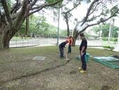 樹木基盤改善--台北列管老樹816號:105-1020 樹木基盤改善--台北列管老樹816號 (6).jpg
