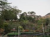 7  藍山園藝:101-1112  自然餵鳥 (7).jpg