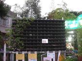 2-1  植生綠牆-花牆-立面綠化-垂直綠化-植生牆:愛心花牆  980720