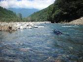 4-5  台灣櫻花鉤吻鮭  族群數量調查:DSCN9391  七家灣溪-台灣櫻花鉤吻鮭的家