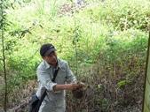 4-4  雪見 - 環境教育及工作假期:104-0430-2 泰安國小環境教育--種樹 (9).jpg