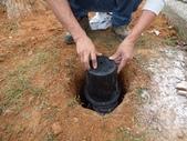 樹木棲地改善--麗池公園土壤透氣工法:104-1221 麗池--透氣工法 (17).jpg