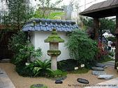 4-6  雪山--五月賞杜鵑:3066  日式庭園--香港花展.JPG