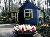 5-4  美麗的花園:美麗花園  002.jpg