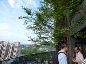 陽台上種大樹 -- 若山:105-1021 綠建築新工法審查--若山 (20).jpg