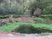 4-5  武陵的秋天:100-1107 櫻花鉤吻鮭生態中心 (8).
