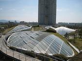 1-1  綠屋頂 -- 屋頂綠化:屋頂綠化-綠屋頂 IMG_4495.JPG