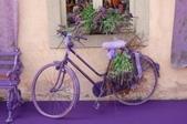 5-5  花:紫 101-0728-58.jpg