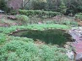 4-5  武陵的秋天:100-1107 櫻花鉤吻鮭生態中心 (11)