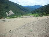 4-5  武陵--雪霸國家公園武陵遊憩區:武陵整地撒種工程  DSCN4494.JPG
