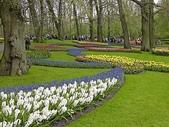 5-4  美麗的花園:美麗花園  012.jpg