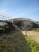 1-1  綠屋頂 -- 屋頂綠化:屋頂綠化-綠屋頂 IMG_4493.JPG