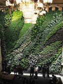 2-1  植生綠牆-花牆-立面綠化-垂直綠化-植生牆:國家音樂廳  綠牆  20.jpg