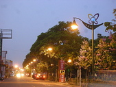 6-1  藍山生活:公路花園的黃昏 02.JPG