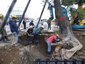 擴大樹穴結構模組--台中列管老樹移植施工實例:105-1206 台中水湳列管老樹移植 (345).jpg