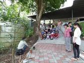 4-4  雪見 - 環境教育及工作假期:104-0430-2 泰安國小環境教育--種樹 (25).jpg