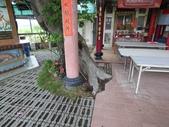 大樹工程-老樹移植-台中水湳列管老樹移植:105-0425 台中水湳列管老樹移植 (4).jpg
