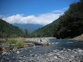 4-5  台灣櫻花鉤吻鮭  族群數量調查:DSCN9393  七家灣溪-台灣櫻花鉤吻鮭的家