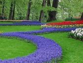 5-4  美麗的花園:美麗花園  014.jpg