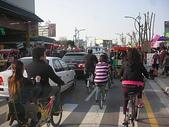 6-1  藍山生活:公路花園  98新年 08.JPG