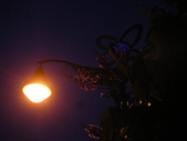 6-1  藍山生活:公路花園的黃昏 11.JPG