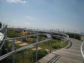 1-1  綠屋頂 -- 屋頂綠化:屋頂綠化-綠屋頂 IMG_4487.JPG