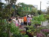 7  藍山園藝:藍山園藝--小學校外教學   DSCN1513