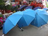 7  藍山園藝:藍山園藝  請用雨傘 01.JPG