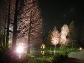5-4  美麗的花園:菁芳園休閒農場 夜景 990224-09.JP