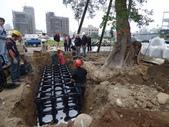 擴大樹穴結構模組--台中列管老樹移植施工實例:105-1206 台中水湳列管老樹移植 (327).jpg