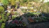 7  藍山園藝:102-1115 藍山園藝.jpg