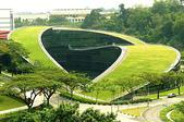 1-1  綠屋頂 -- 屋頂綠化:綠屋頂-屋頂綠化 013.jpg
