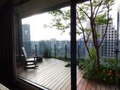 陽台上種大樹 -- 若山:105-1021 綠建築新工法審查--若山 (38).jpg