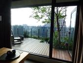 陽台上種大樹 -- 若山:105-1021 綠建築新工法審查--若山 (39).jpg