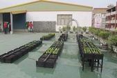 1-4  屋頂菜園 -- 竹南營盤社區之社區營造屋頂菜園:103-1022 屋頂菜園--營盤社區營造 (215).jpg