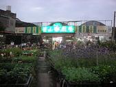 7  藍山園藝:藍山園藝 990128.JPG