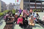 1-4  屋頂菜園 -- 竹南營盤社區之社區營造屋頂菜園:103-1022 屋頂菜園--營盤社區營造 (98).jpg
