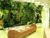 綠牆--法國綠牆大師派翠克.布朗克(Patrick Blanc)綠牆作品:16-10-20107-32-280.jpg
