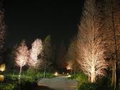 5-4  美麗的花園:菁芳園休閒農場 夜景 990224-08.JP