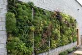綠牆--法國綠牆大師派翠克.布朗克(Patrick Blanc)綠牆作品:1720-vertical-gardening-ideas-with-brick-walls.jpg