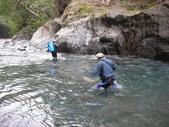 4-5  台灣櫻花鉤吻鮭  族群數量調查:DSCN9519  桃山西溪--歸途涉水
