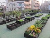 1-4  屋頂菜園 -- 竹南營盤社區之社區營造屋頂菜園:103-1030 屋頂菜園--營盤社區營造 (4).jpg