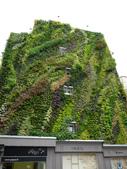 綠牆--法國綠牆大師派翠克.布朗克(Patrick Blanc)綠牆作品:24062013-P1750561.jpg
