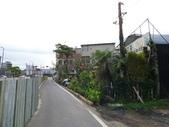 7  藍山園藝:105-0630 藍山園藝  (53).jpg
